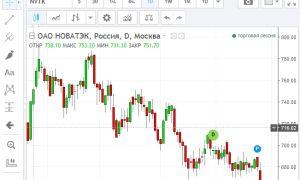Онлайн-график котировок акций «Новатэк» и их особенности